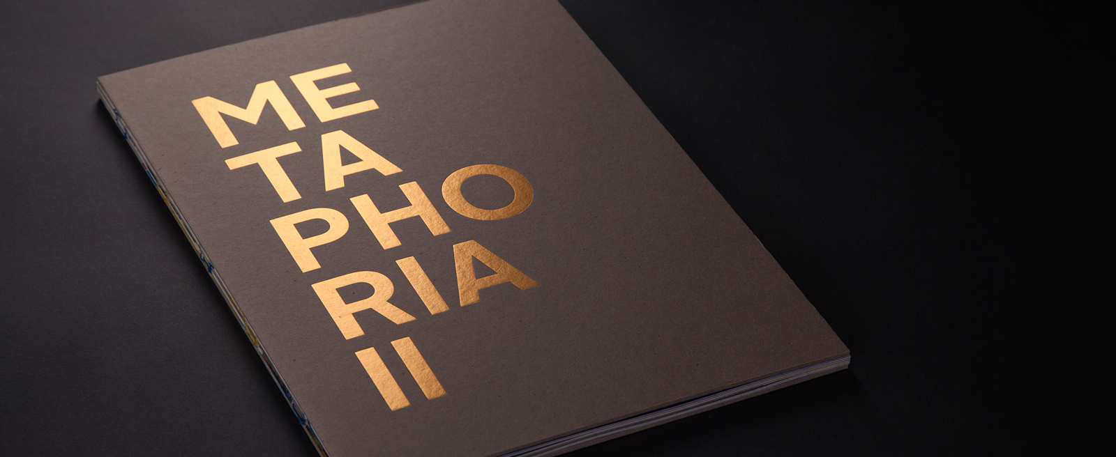 Metaphoria II, visiting the exhibition through a catalog